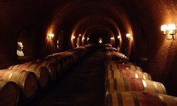 Private Wine Tasting with Top Wine Makers