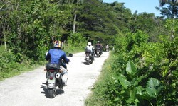 Jungle to Coast by Motorcycle