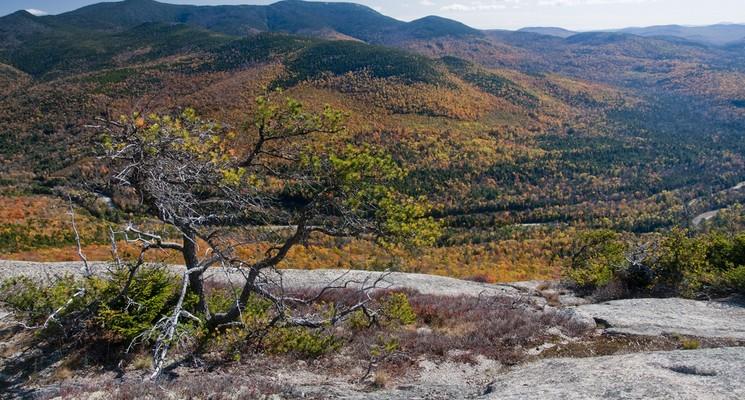 White Mountains- Fall Hiking