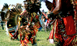 Join a traditional Native American Pow Wow