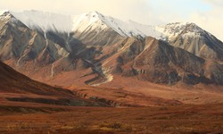 Backcountry Living Near Denali National Park