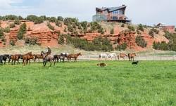 Red Reflet Ranch